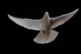 Equilíbrio e Paz